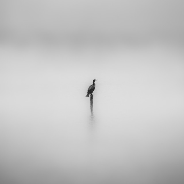 """all by myself-reprise"" stock image"