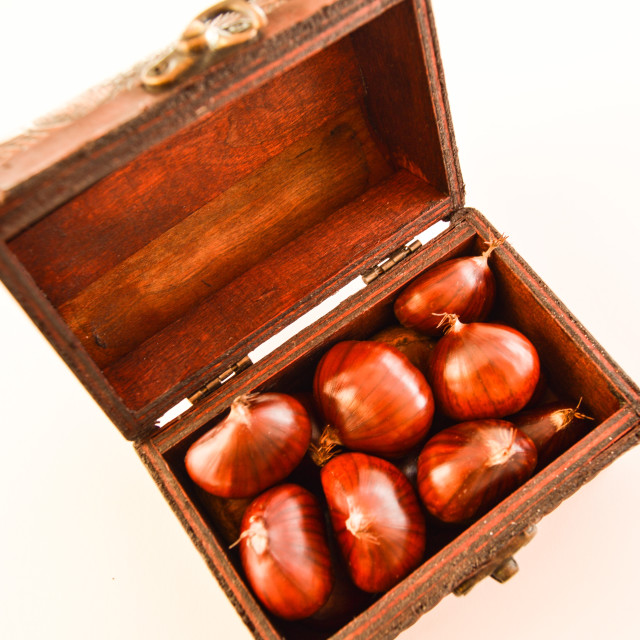 """Treasure chest with chestnuts"" stock image"