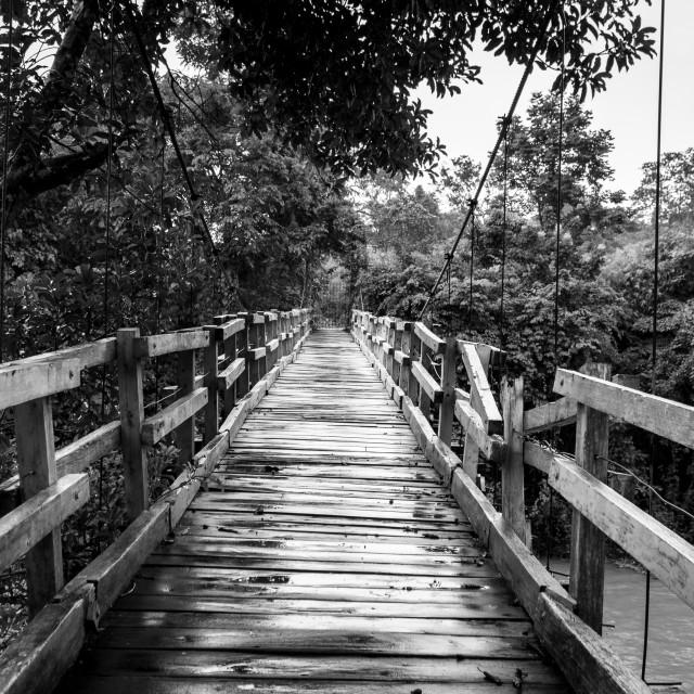 """""""Blue wood bridge. Black and white"""" stock image"""