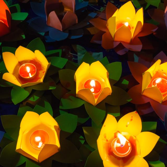 """""""Many lotus lanterns"""" stock image"""