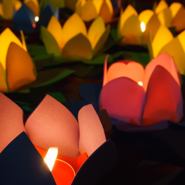 """Candle lotus lanterns"" stock image"