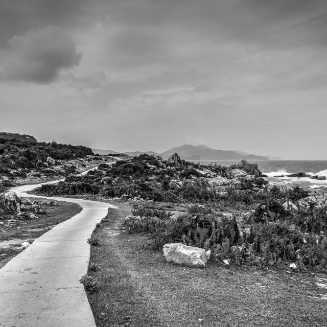"""Empty road along the coastline. B&W"" stock image"