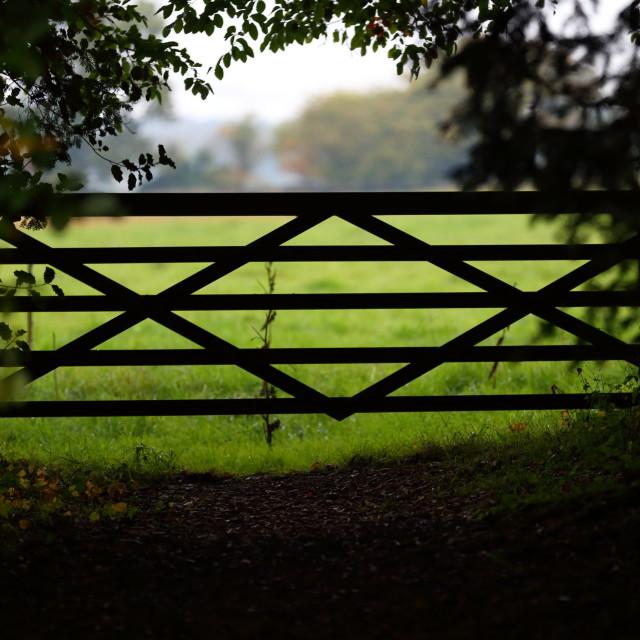 """Gate"" stock image"