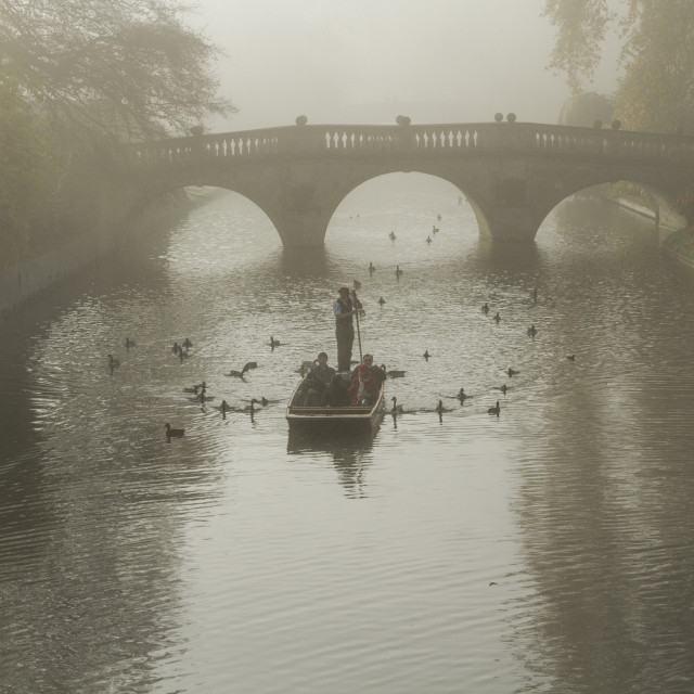 """Early morning punt, River Cam, Cambridge, UK"" stock image"