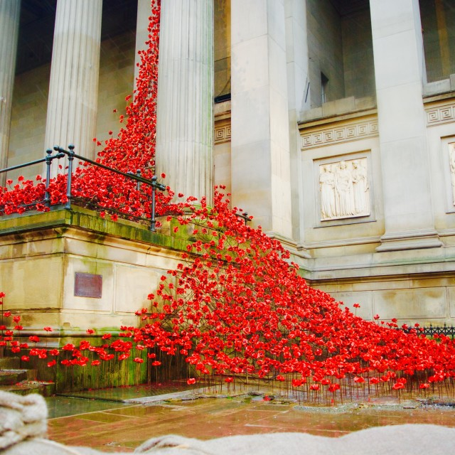 """Poppy War memorial"" stock image"