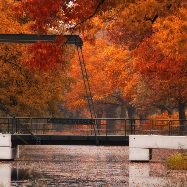 """Autumn Bridge"" stock image"