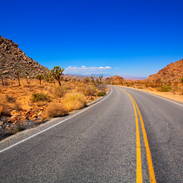 """Joshua Tree boulevard Road in Yucca Valley desert California"" stock image"