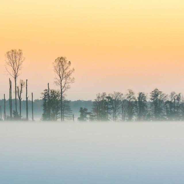 """Misty Landscape Sunset"" stock image"