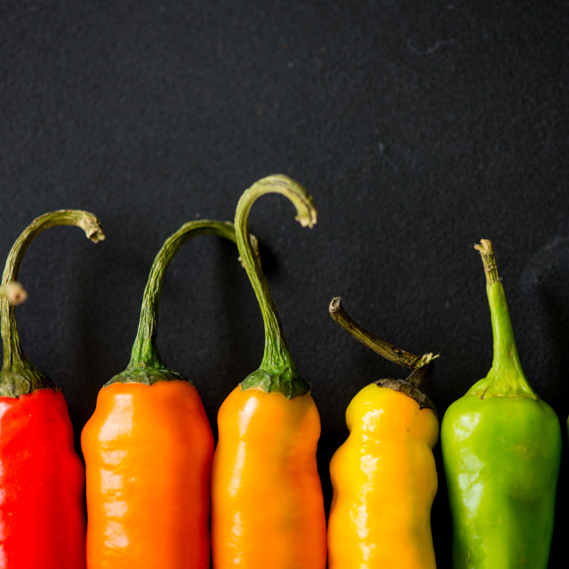 """""""vibrant colors on peppers on black slate bacground"""" stock image"""