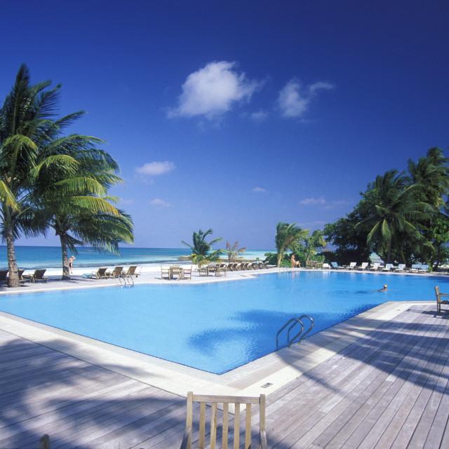 """""""ASIA INDIAN OCEAN MALDIVES SEASCAPE SWIMMINGPOOL"""" stock image"""