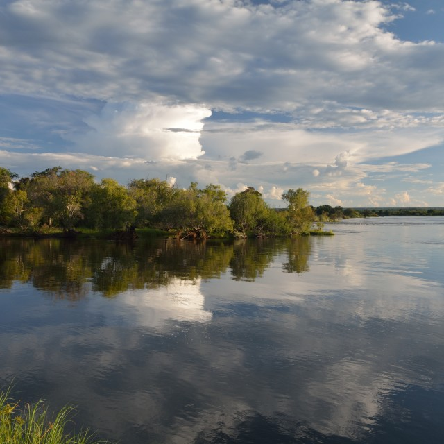 """Zambezi reflections"" stock image"