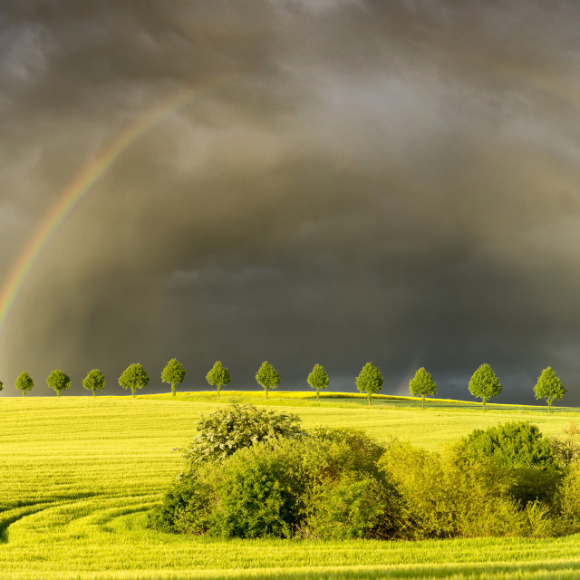 """sun,rainfal and rainbow"" stock image"