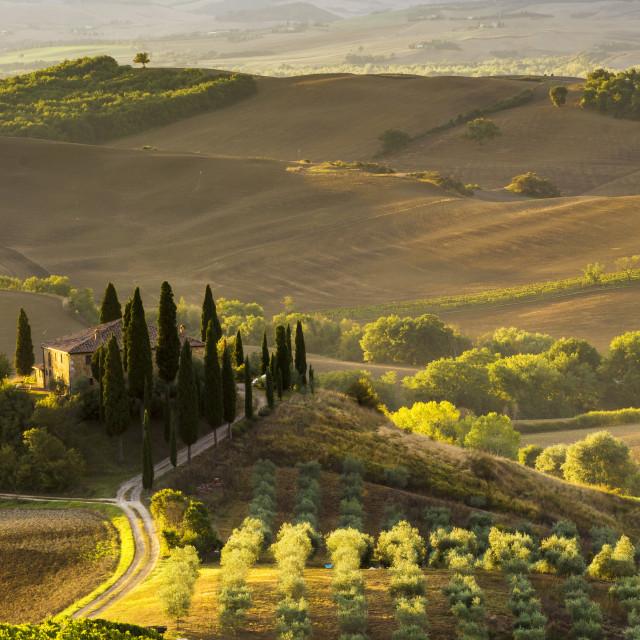 """""""Tuscany lanscape"""" stock image"""