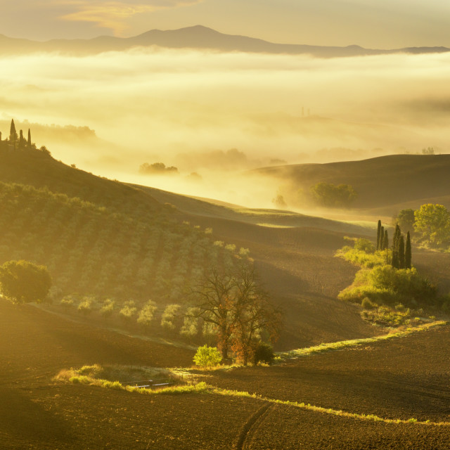 """Tuscany landscape ,farmhouse in the Tuscan hills of the beautiful autumn morning"" stock image"