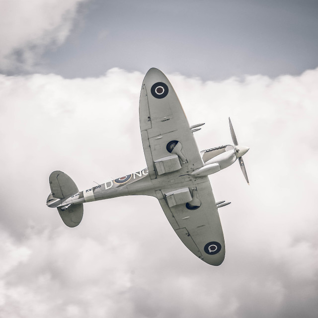 """Spitfire in flight"" stock image"