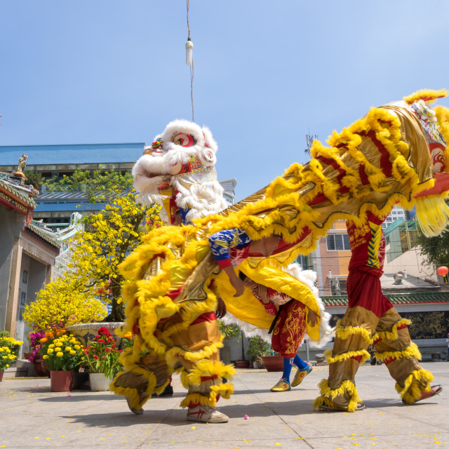 """""""Lion dancing to celebrate Lunar New Year"""" stock image"""