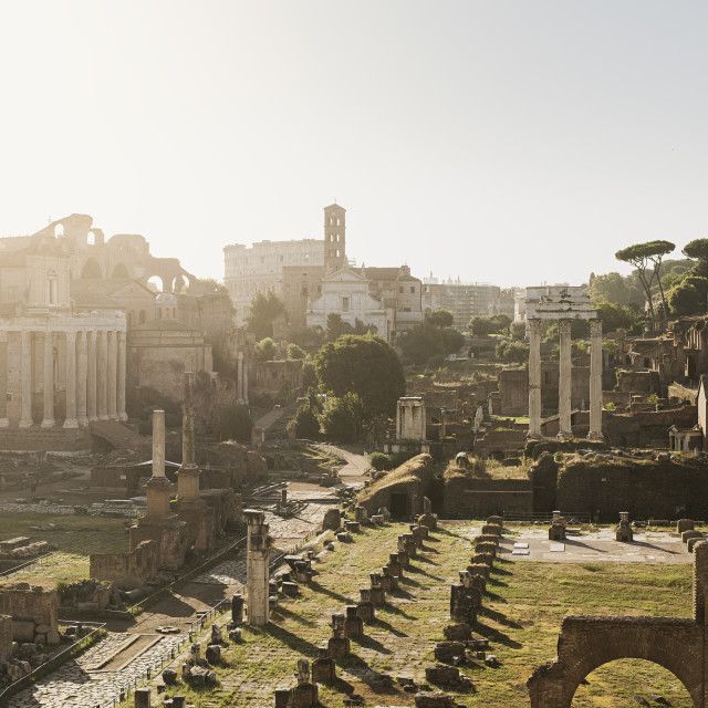 """Roman Forum"" stock image"