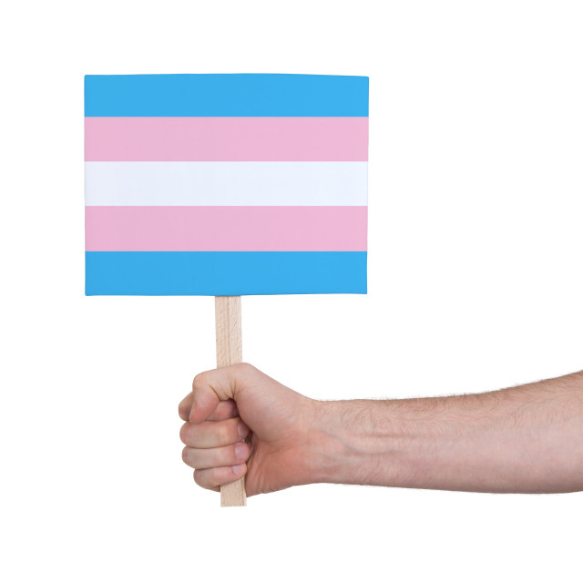"""Hand holding small card - Flag of Trans Pride"" stock image"