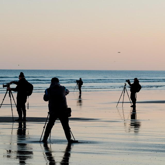 """Photographers on the beach"" stock image"