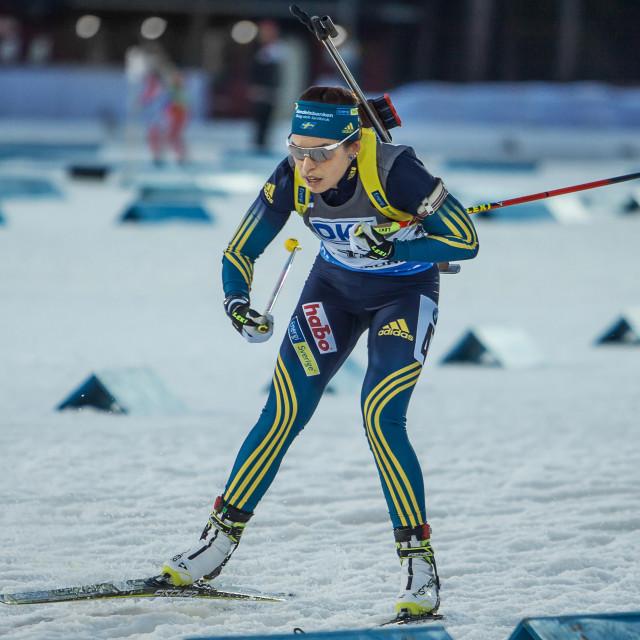 """biathlon"" stock image"