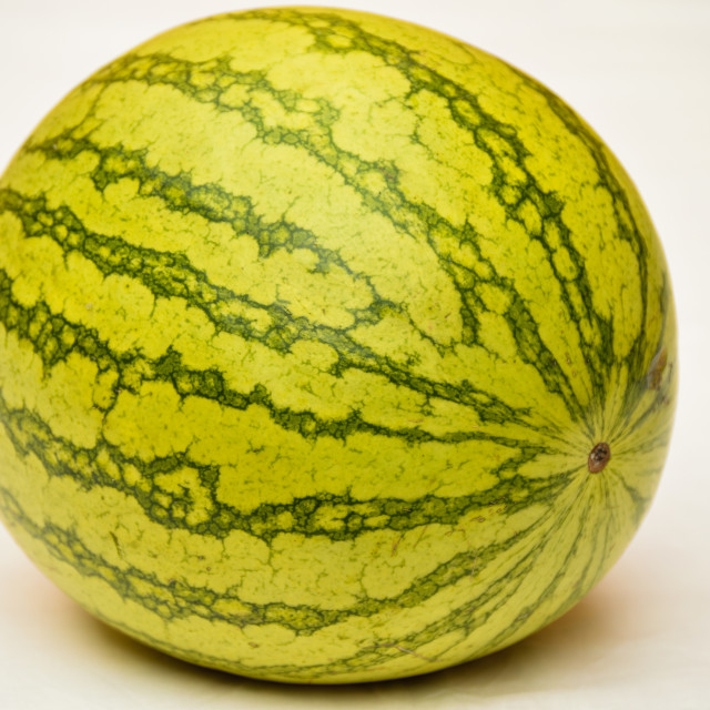 """Watermelon"" stock image"