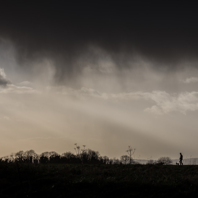 """Storm Cloud Dog Walker, Wiltshire"" stock image"