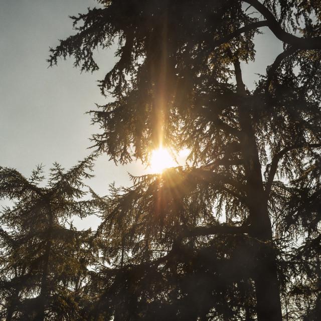 """""""Hidden Sun"""" stock image"""