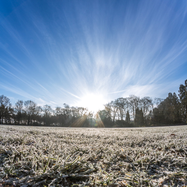 """""""frost eye's view"""" stock image"""