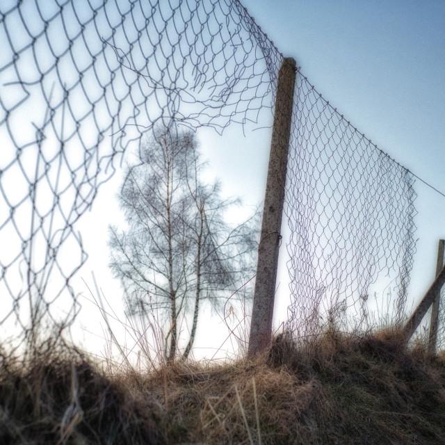 """""""Fence"""" stock image"""
