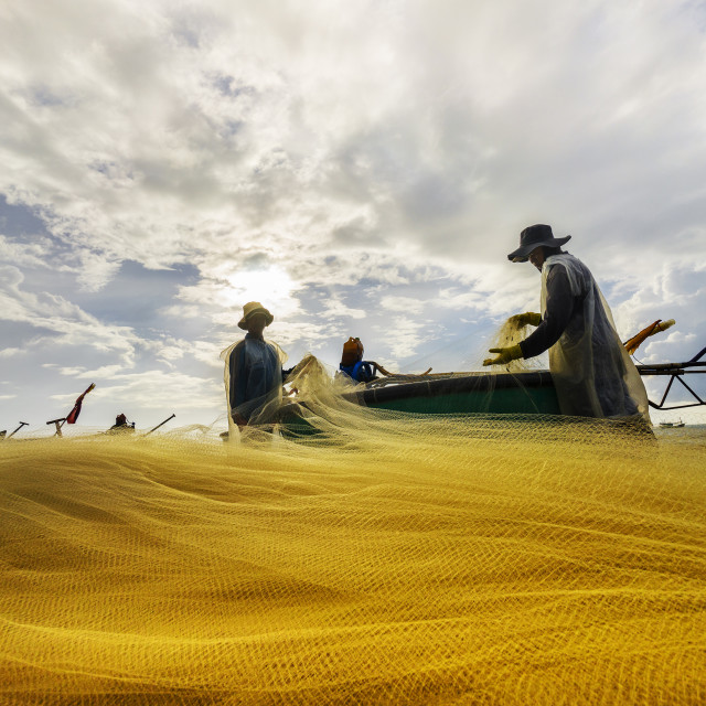 """fisherman working in the morning"" stock image"
