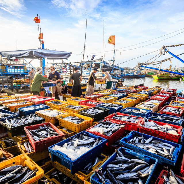 """fishing port"" stock image"