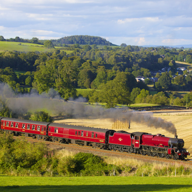 """Steam train by hay field."" stock image"
