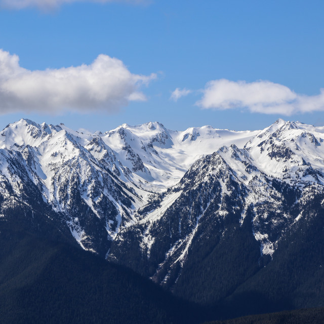 """Olympic Mountain Range"" stock image"