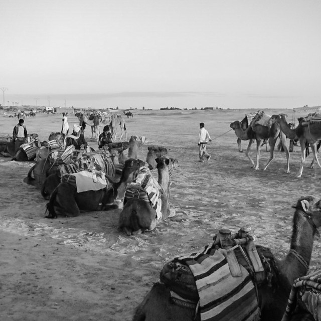 """Bedouin Camp"" stock image"