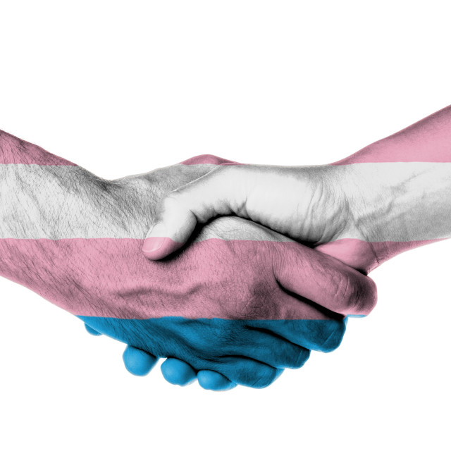 """Man and woman shaking hands"" stock image"
