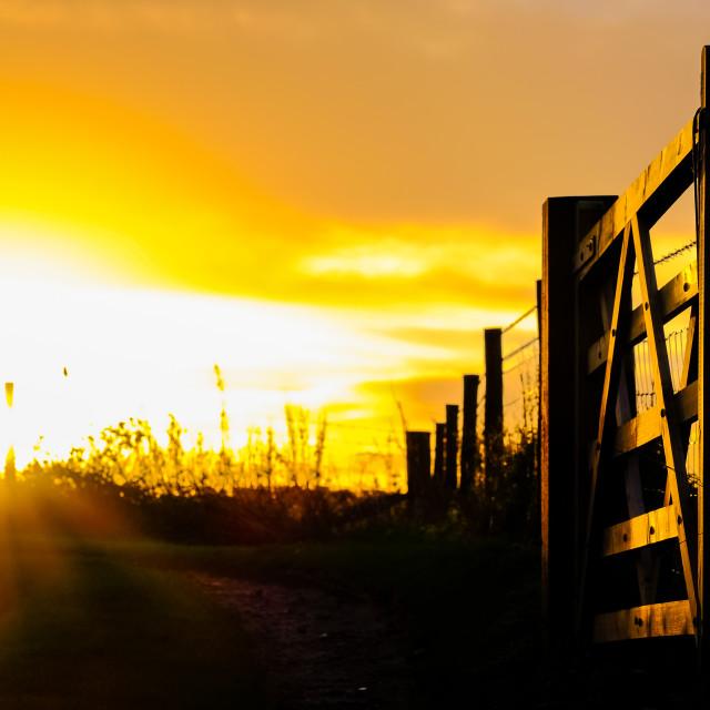 """Golden Sunrise through large farm gate"" stock image"