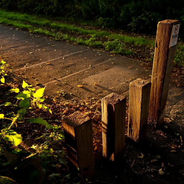 """Pathway."" stock image"
