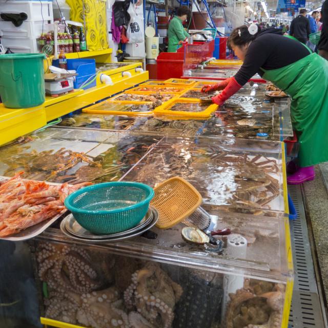 """Fish Market"" stock image"