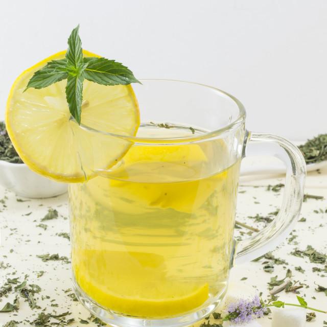 """Mint tea with lemon and a fresh mint"" stock image"