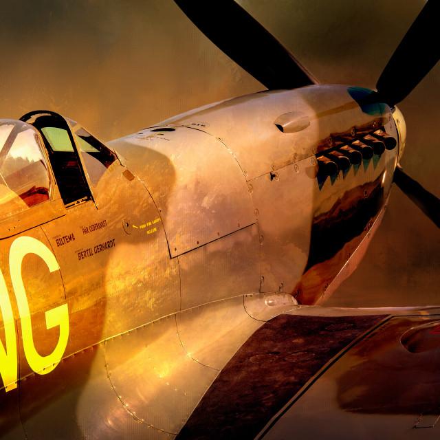 """Spitfire mk IX"" stock image"