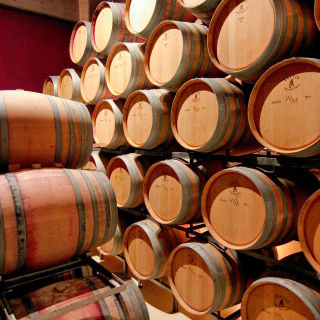 """Wine barrels"" stock image"