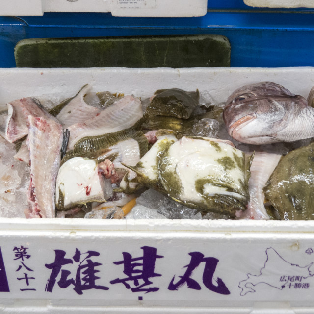 """""""Fish for sale"""" stock image"""