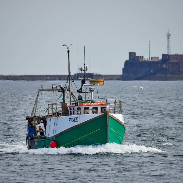 """Fishing vessel returns to port."" stock image"