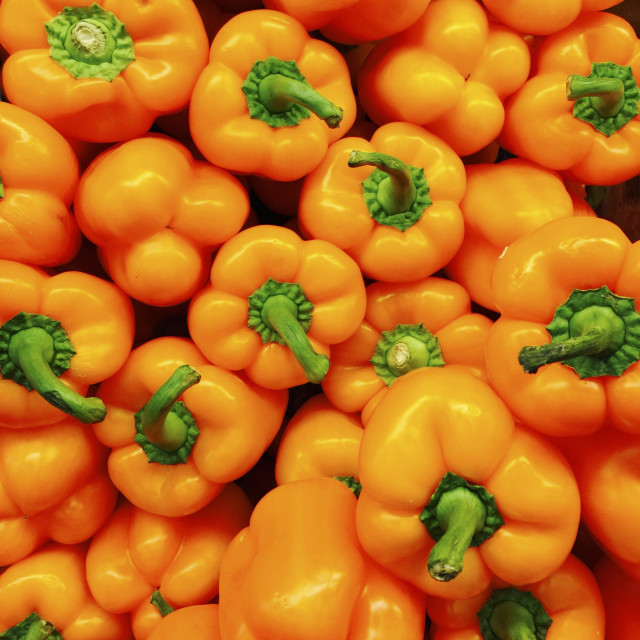 """Orange Peppers"" stock image"