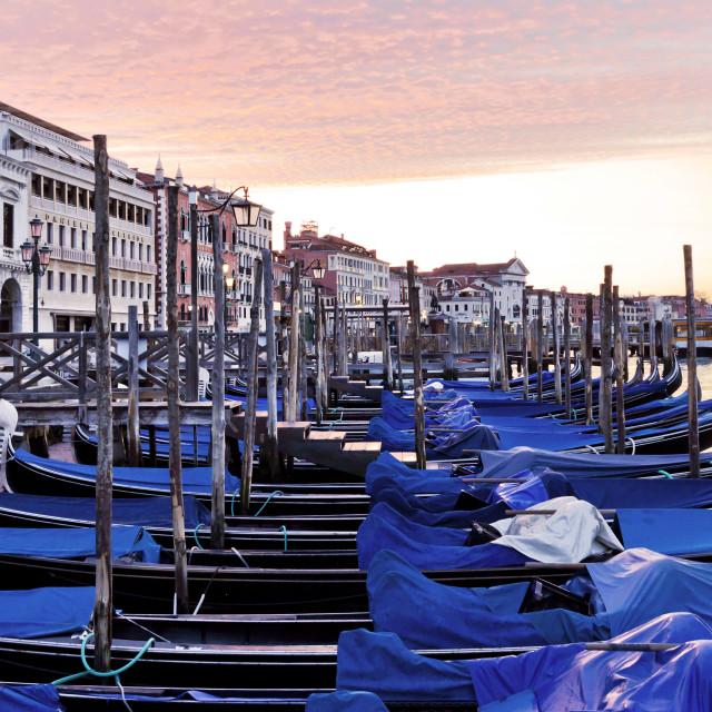 """""""Gondolas in Venice at Dawn"""" stock image"""
