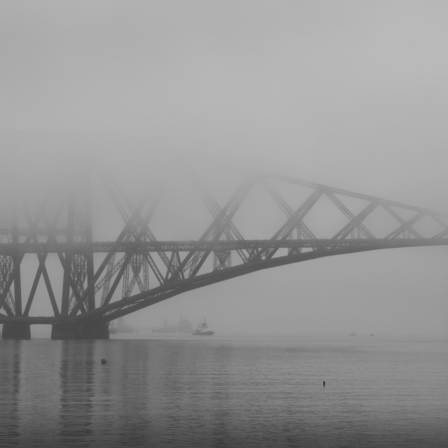 """Misty Forth"" stock image"