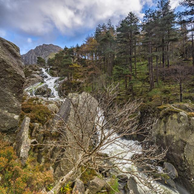 """""""Ogwen Falls"""" stock image"""