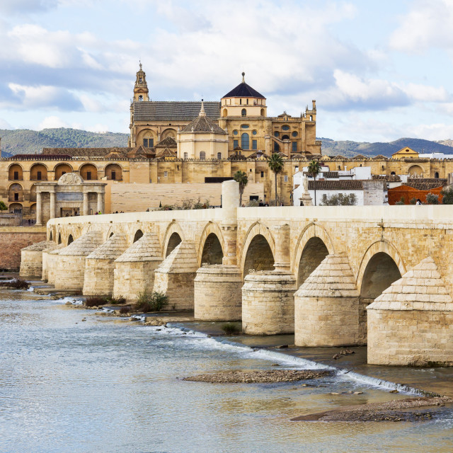 """Roman Bridge and Mosque Cathedral of Cordoba in Spain"" stock image"