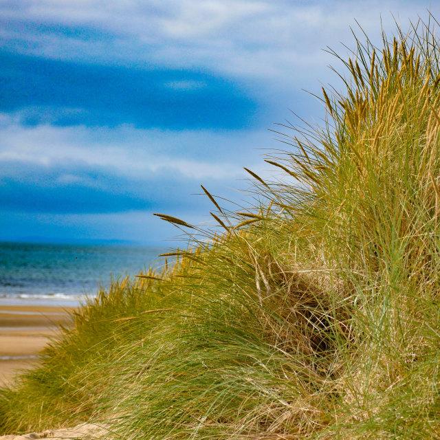 """Wales beach"" stock image"