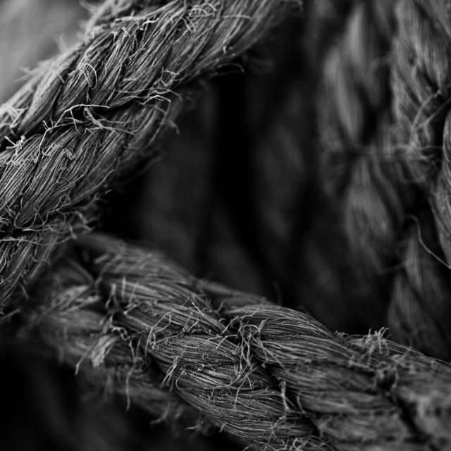 """""""Rope (Black and White)"""" stock image"""